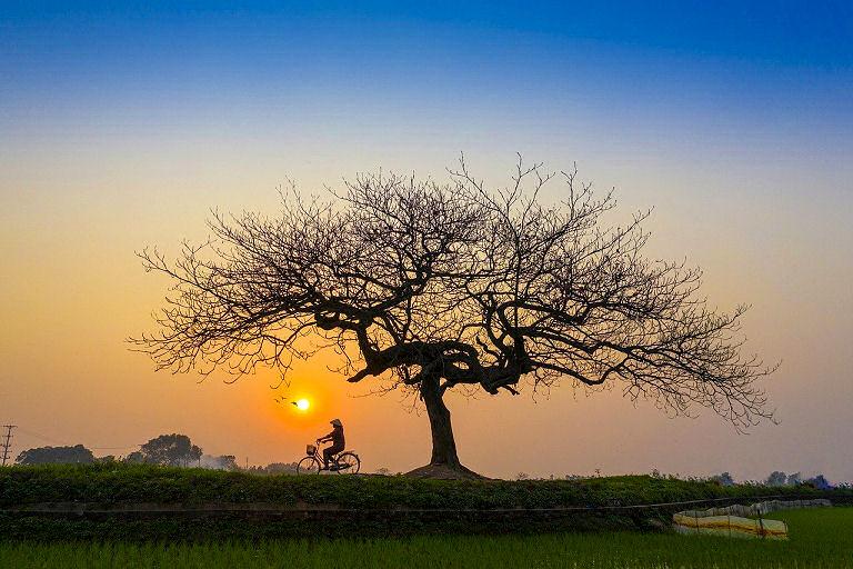 Leben wandelt sich - von Moment zu Moment.