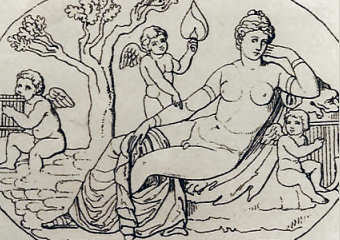 Hermaphroditos