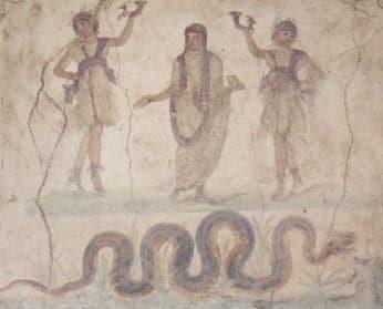 Laren und Schlangen